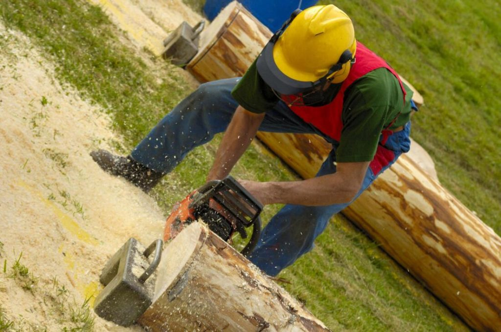 Miami Lakes FL Tree Trimming and Stump Grinding Services Home Page-We Offer Tree Trimming Services, Tree Removal, Tree Pruning, Tree Cutting, Residential and Commercial Tree Trimming Services, Storm Damage, Emergency Tree Removal, Land Clearing, Tree Companies, Tree Care Service, Stump Grinding, and we're the Best Tree Trimming Company Near You Guaranteed!