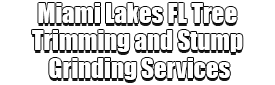 Miami Lakes FL Tree Trimming and Stump Grinding Services Logo-We Offer Tree Trimming Services, Tree Removal, Tree Pruning, Tree Cutting, Residential and Commercial Tree Trimming Services, Storm Damage, Emergency Tree Removal, Land Clearing, Tree Companies, Tree Care Service, Stump Grinding, and we're the Best Tree Trimming Company Near You Guaranteed!